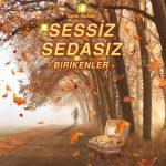 Sessiz Sedasız